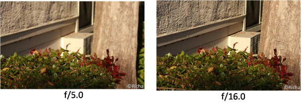 Effect of aperture on depth of field.