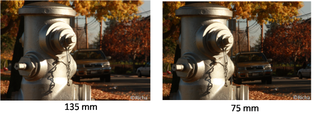 Effect of focal length on depth of field.